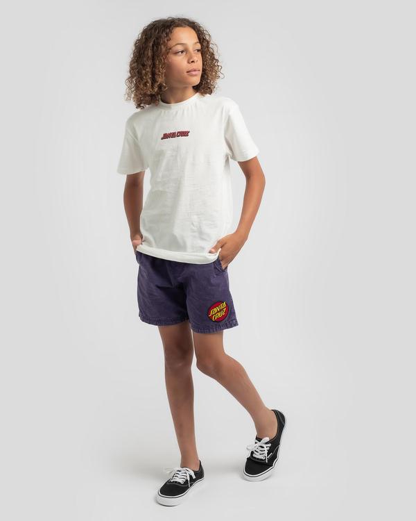 Santa Cruz Boys' Cruizer Beach Shorts for Mens image number null